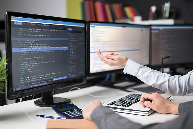 Perfil profesional de Ingeniería en Información y Control de Gestión